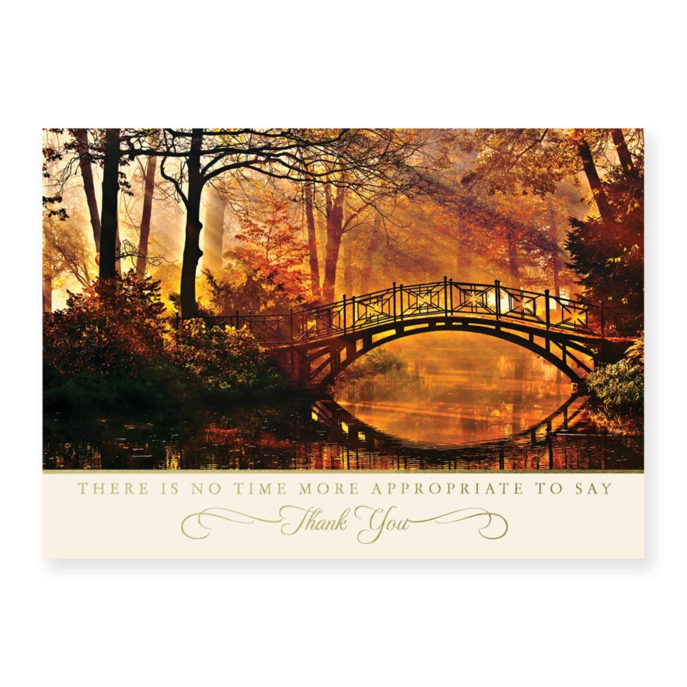 thank you brilliance deluxe holiday greeting cards - Deluxe Christmas Cards