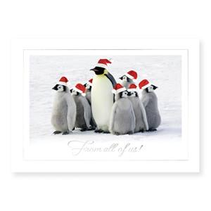 Family of Penguins Classic Holiday Greeting Cards