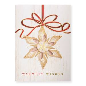 Warmest Wishes Shells Deluxe Greeting Card