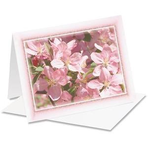 Apple Blossoms Note Cards