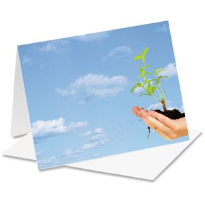 Hands Holding Plant Notecards