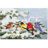 Birds on Branch Boxed Holiday Greeting Cards