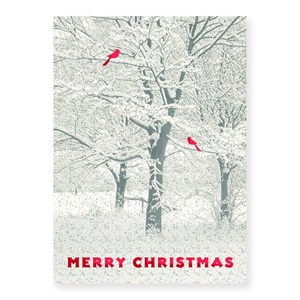 Snowy trees boxed holiday greeting cards paperdirects snowy trees boxed holiday greeting cards m4hsunfo