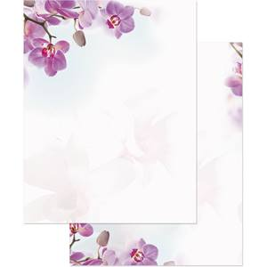 Orchid Newsletters