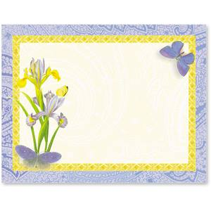 Iris and Butterflies Postcards