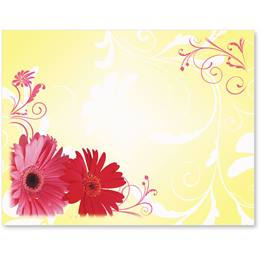 Dancing Daisies Postcards