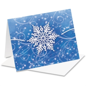 Winter Snow Holiday NoteCards by PaperDirect