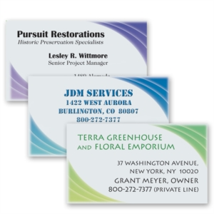 Pursuit Business Cards by PaperDirect