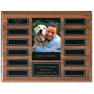 Perpetual Photo Award Plaque by PaperDirect