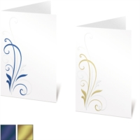 Avalon Specialty Programs by PaperDirect