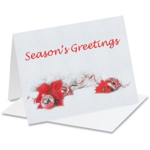 Tis the Season NoteCards by PaperDirect