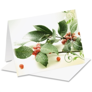 Holiday Holly Note Cards by PaperDirect