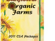 Sunflower Garden 3 Panel Brochures