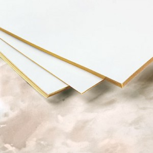 Gilt Edged Paper by PaperDirect