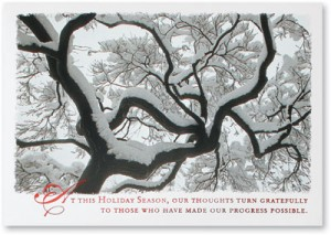 Majestic Tree Greeting Cards