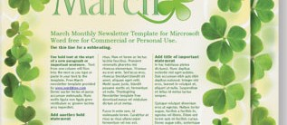 Sassy Shamrocks Newsletters by PaperDirect