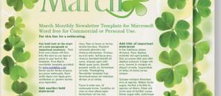 Sassy Shamrocks Newsletters by PaperDirect