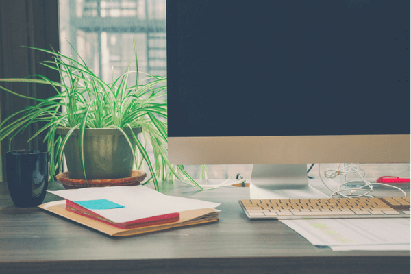best plants for office desks