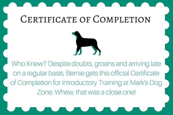 Completion Wording  Certificate Sayings